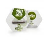 NYC Diesel Autoflowering Bulk Seeds