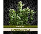 Feminized Mix (10 seeds)