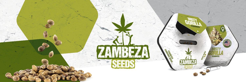 Zambeza