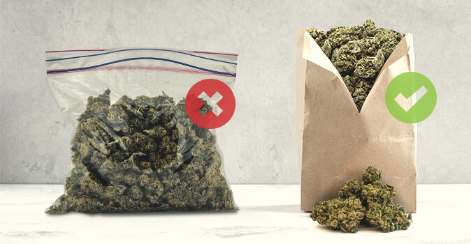 Paper bags can remove moisture from your weed, thereby minimising the risk for mould.