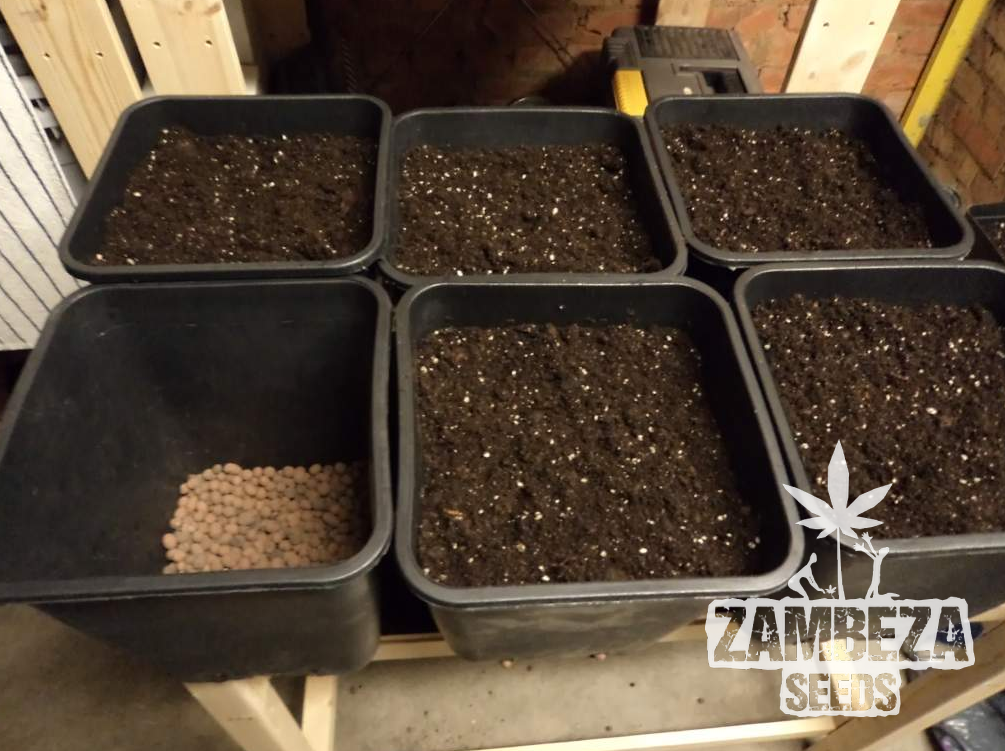 Create soil for your cannabis plants