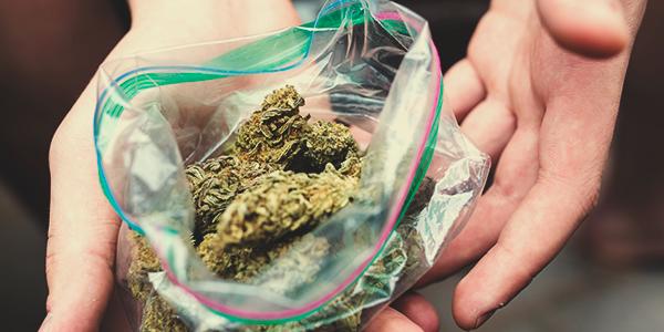 Plastic Cannabis Bag