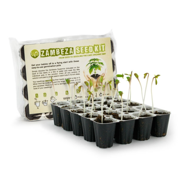 Zambeza Seedkit Best cannabis seeds germination kit