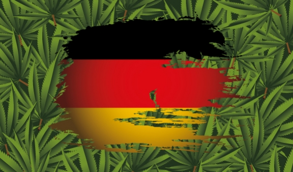 Top 5 Cannabis Strains to Grow in German Climate