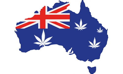 Australia Has Legalised The Growth Of Medical Cannabis