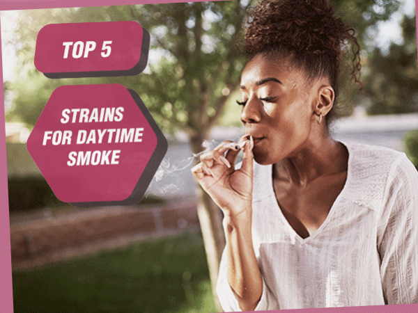Top 5 Cannabis Strains For Daytime Smoking