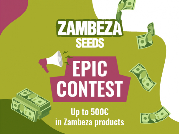 Enter The Zambeza Contest For The Chance To Win Big