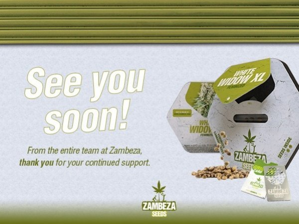 Zambeza Seeds Online Sales Update