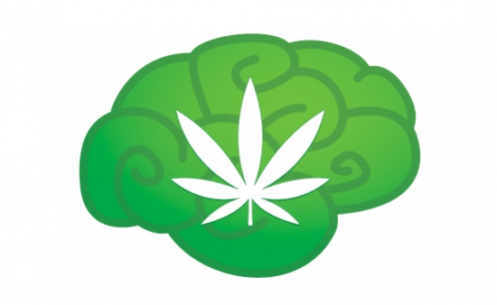 Could Cannabis Make You Smarter?