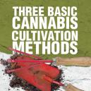 Three Basic Cannabis Cultivation Methods