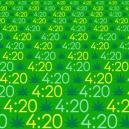 The origin of 420