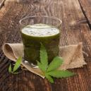 Benefits Of Juicing Raw Cannabis