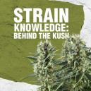 Strain Knowledge: Behind The Kush
