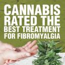 Cannabis Rated the Best Treatment for Fibromyalgia