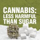 Cannabis Is Less Harmful Than Sugar