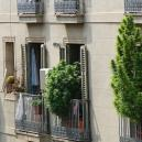 Growing Weed On A Balcony