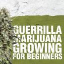 Guerilla Marijuana Growing for Beginners