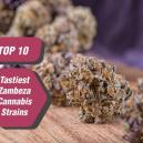 Top 10 Tastiest Zambeza Cannabis Strains