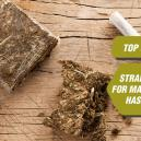 Top 5 Strains For Making Hash