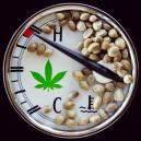 The ideal temperature range for growing Cannabis.